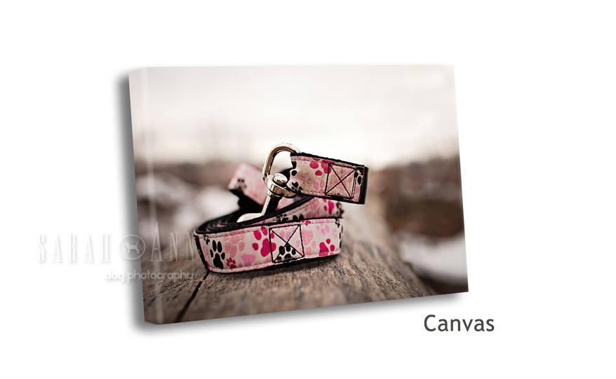 animal-pet-prints-for-sale-custom-pet-wall-piece-vet-office-decor