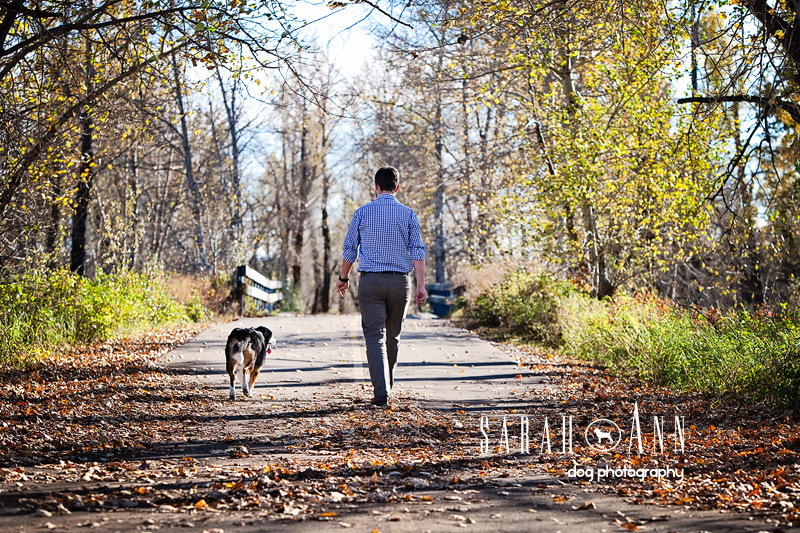 image-man-walking-with-dog- fall leaves - photo- man- and -dog-walking- away, men and their dogs