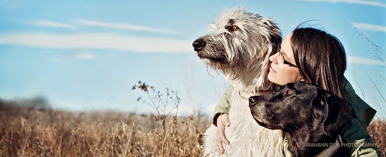 Irish-wolfhound-and-woman-photo-SarahAnn-Dog-Photo